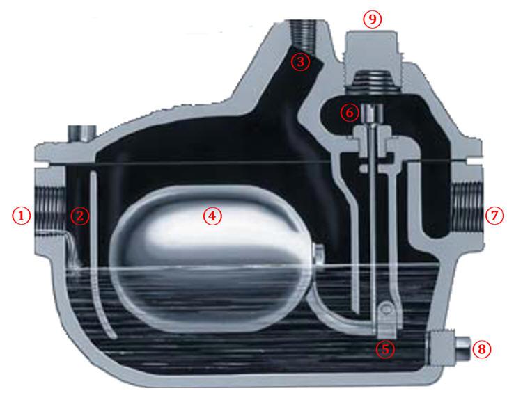 steam trap design